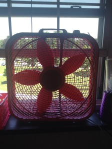 Of course, a pink fan is necessary.  It gets awfully warm in the dorms outside of summer, so just imagine during....  And it's essentially obligatory that all new additions to the room are pretty.
