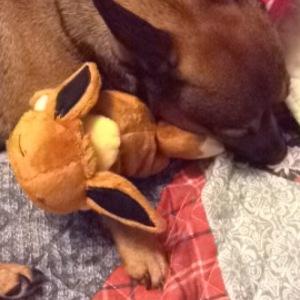 Cooper bonded with Sleepy Eevee.