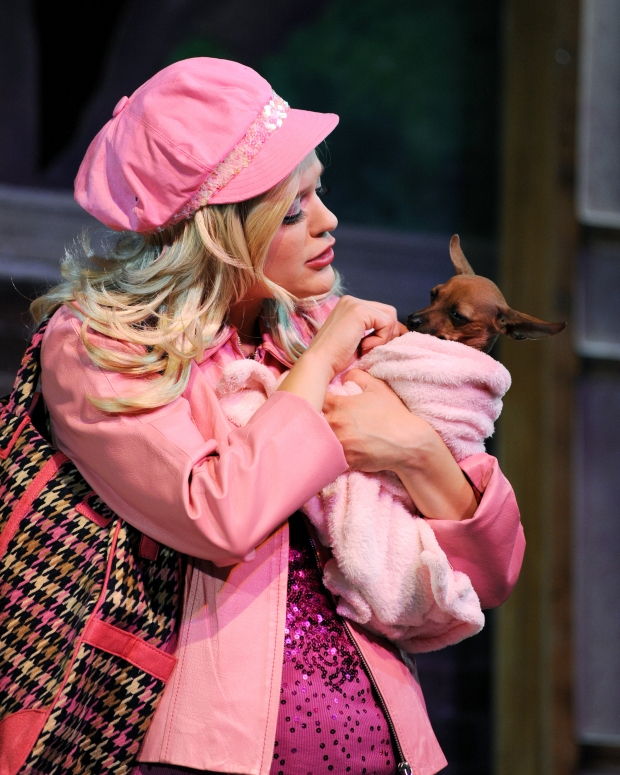 legally-blonde-peg-tour-legally-blonde-the-musical-25946786-2048-2560